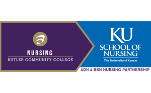 Nursing Partnership News