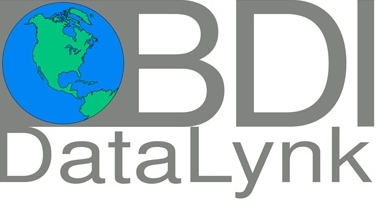 BDI Data Lynk Logo