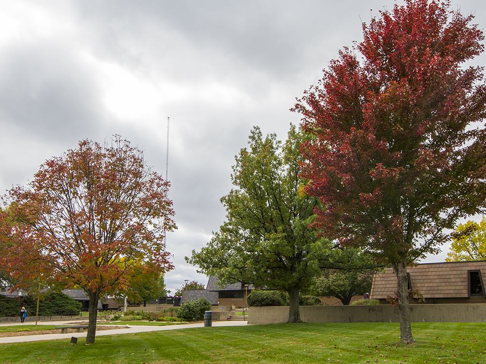 Gray clouds cover a fall scene on campus.