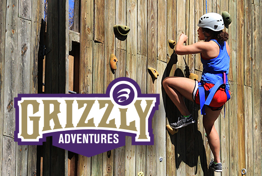Grizzly Adventures Wall and Logo