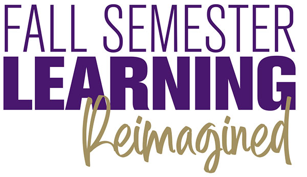 Fall Semester Learning Reimagined